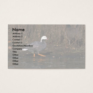 Emperor Goose Business Card
