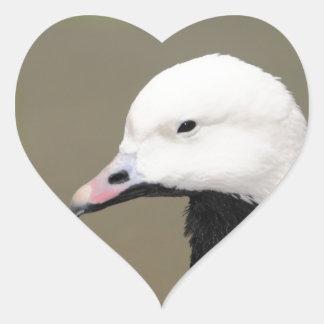 Emperor Goose Heart Sticker