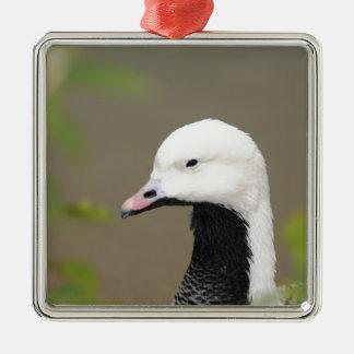 Emperor Goose Metal Ornament