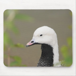 Emperor Goose Mouse Pad
