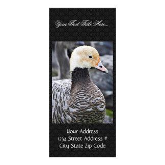 Emperor Goose Custom Rack Card