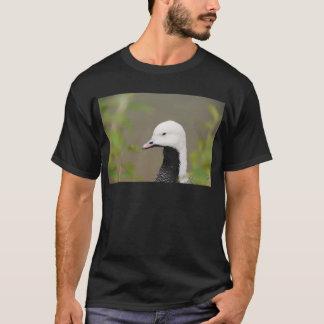 Emperor Goose T-Shirt