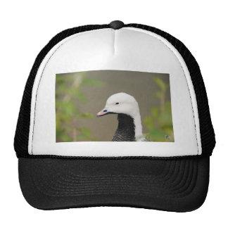 Emperor Goose Trucker Hat