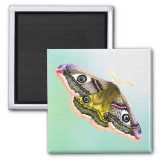 Emperor Hawk Moth Painting Watercolour Magnet