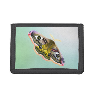Emperor Hawk Moth Painting Watercolour Tri-fold Wallets