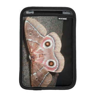 Emperor Moth (Saturniidae) On Tree iPad Mini Sleeves