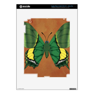 Emperor of India Butterfly iPad 3 Decals