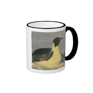 Emperor Penguin, Aptenodytes forsteri), Coffee Mug