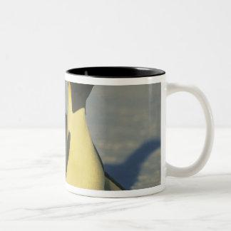 Emperor Penguin, Aptenodytes forsteri), Two-Tone Coffee Mug