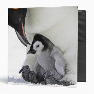 Emperor Penguin At Snow Hill Island Binder