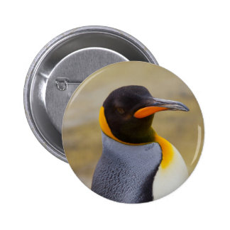 Emperor Penguin Pin