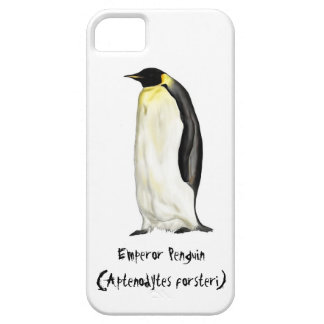 Emperor penguin case for iphone 5