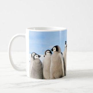 Emperor Penguin Chicks mug
