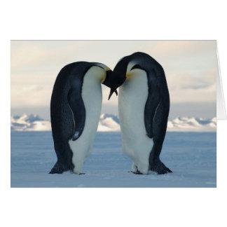 Emperor Penguin Courtship Greeting Card