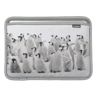 Emperor penguin MacBook air sleeve