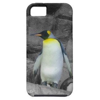 Emperor Penguin iPhone SE/5/5s Case