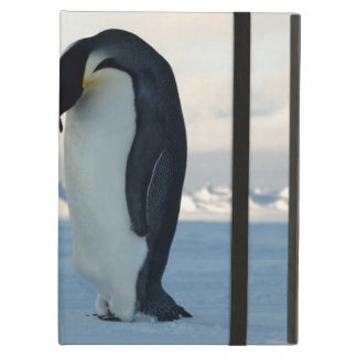 Emperor Penguin Kiss Powis iCase iPad Cases