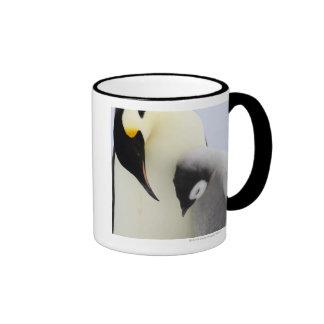 Emperor Penguin looking at chick Coffee Mug