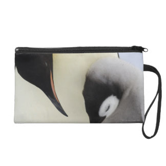 Emperor Penguin looking at chick Wristlet