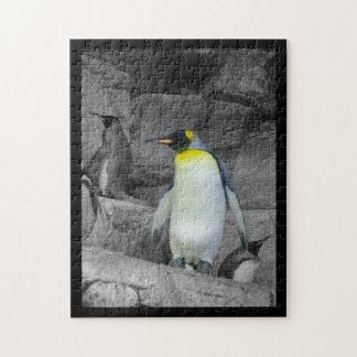 Emperor Penguin Puzzle