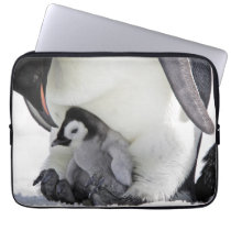 Emperor Penguin   Snow Hill Island Computer Sleeve