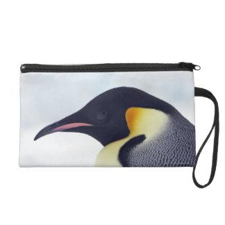 Emperor Penguin, Snow Hill Island Wristlet Purse