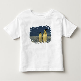 Emperor Penguins, Aptenodytes forsteri), Mt. Toddler T-shirt