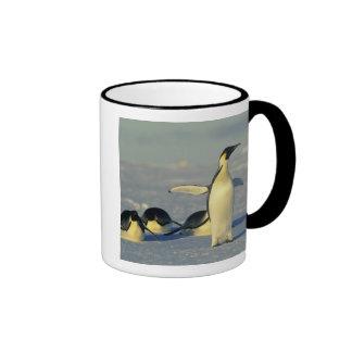 Emperor Penguins, Aptenodytes forsteri), Coffee Mug