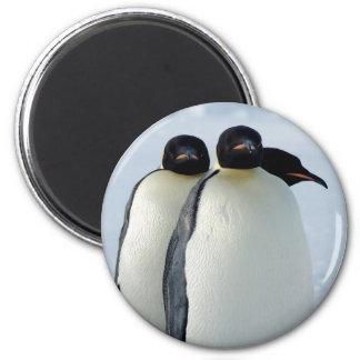 Emperor Penguins Huddled 2 Inch Round Magnet