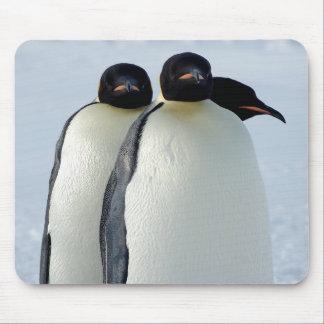 Emperor Penguins Huddled Mouse Pad