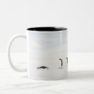 Emperor Penguins on Ice - mug