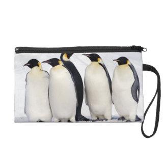 Emperor Penguins Wristlet