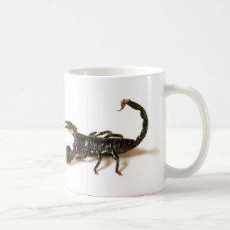 Emperor Scorpion Mug / Cup