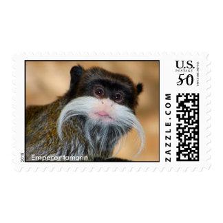 Emperor tamarin postage