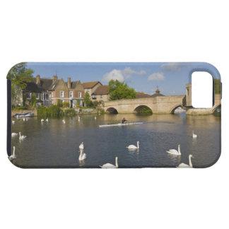 Empiedre el puente y el río arqueados Ouse, St iPhone 5 Carcasa