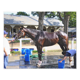 "Empire Stakes Winner ""Saratoga Snacks"" Photo Print"