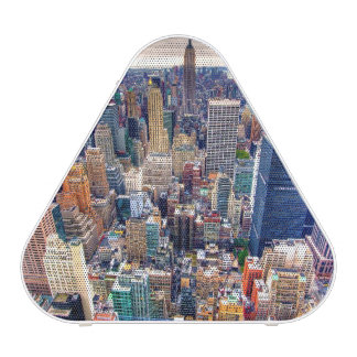 Empire State Building and Midtown Manhattan Speaker