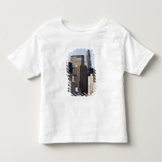 Empire State Building and New York City, New Toddler T-shirt