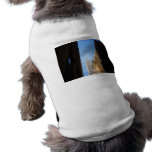 Empire State Building And Shadows, New York City Doggie T Shirt