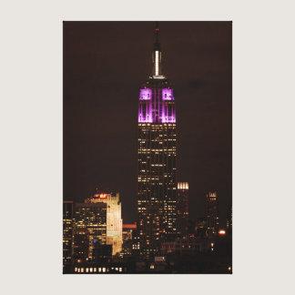 Empire State Building in Purple & White 01 Canvas Print