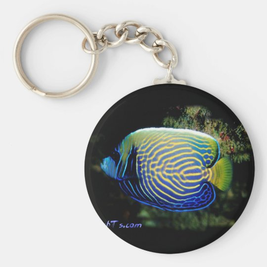 Emporer Angelfish Keychain