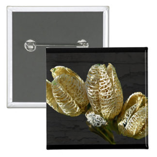 Empty Lily Seed Pods Coordinating Items Button