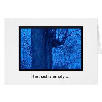 Empty Nest/Here For You Note Card