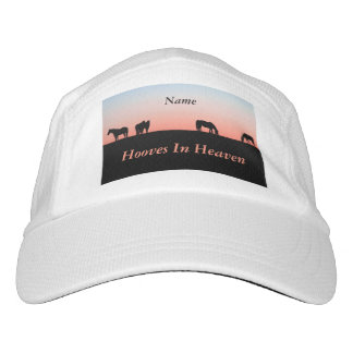 Empty Pasture Headsweats Hat