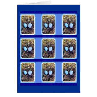 Empty Robin Eggs Greeting Card