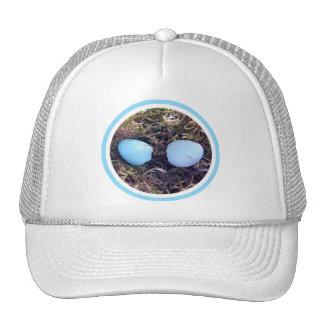 Empty Robin Eggs Hat