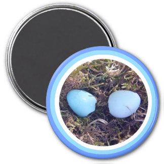 Empty Robin Eggs Magnet