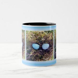 Empty Robin Eggs Mug