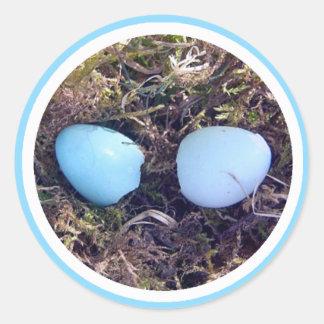 Empty Robin Eggs Sticker