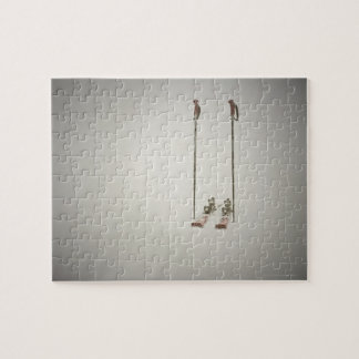 Empty Skis and Poles Jigsaw Puzzle